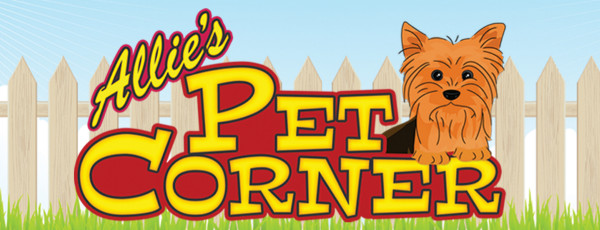 allies pet corner logo