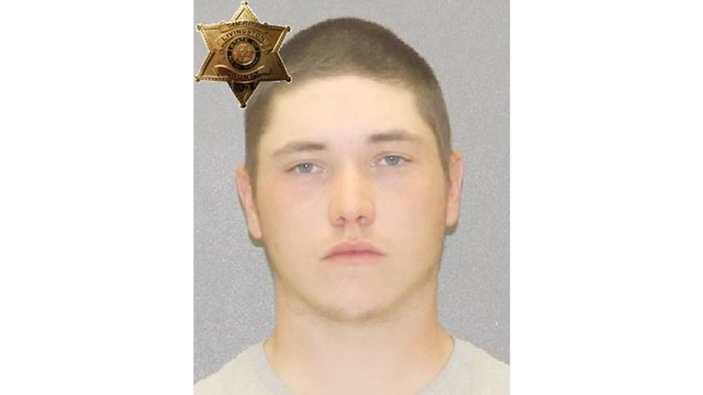 Livonia man charged with felonies for stealing guns