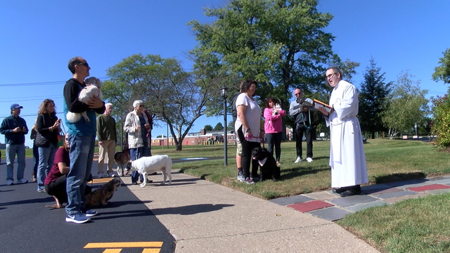 Mother of Sorrows Church holds pet blessings