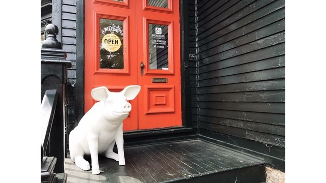 UPDATE: Stolen Park Ave pig 'Wilbur' recovered by owners